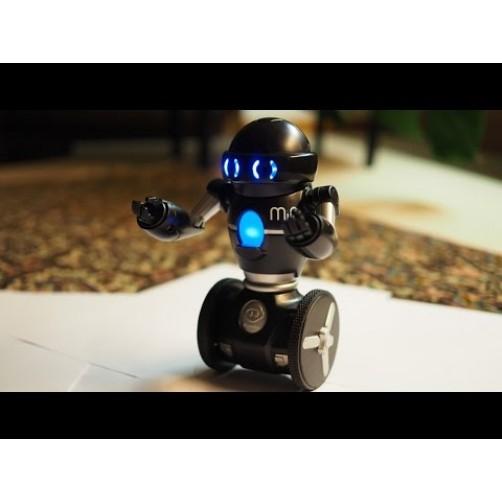 Balansinis robotas