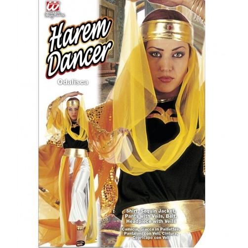 Haremo šokėjos kostiumas XL