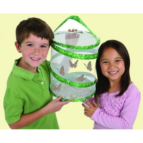 Krepšelis drugeliams auginti, laikyti ir pervežti